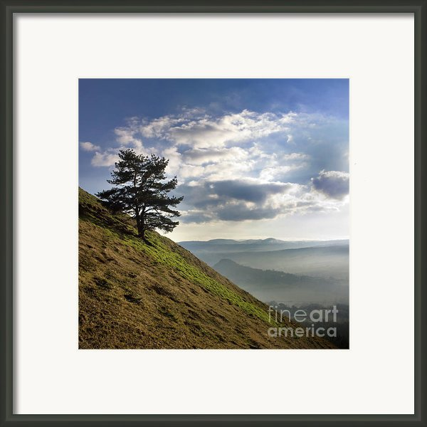 Tree And Misty Landscape Framed Print By Bernard Jaubert