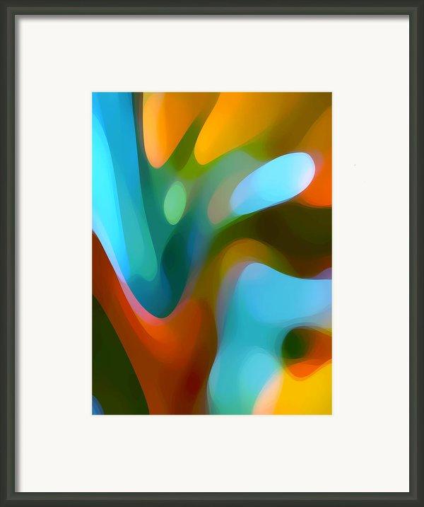 Tree Light 3 Framed Print By Amy Vangsgard