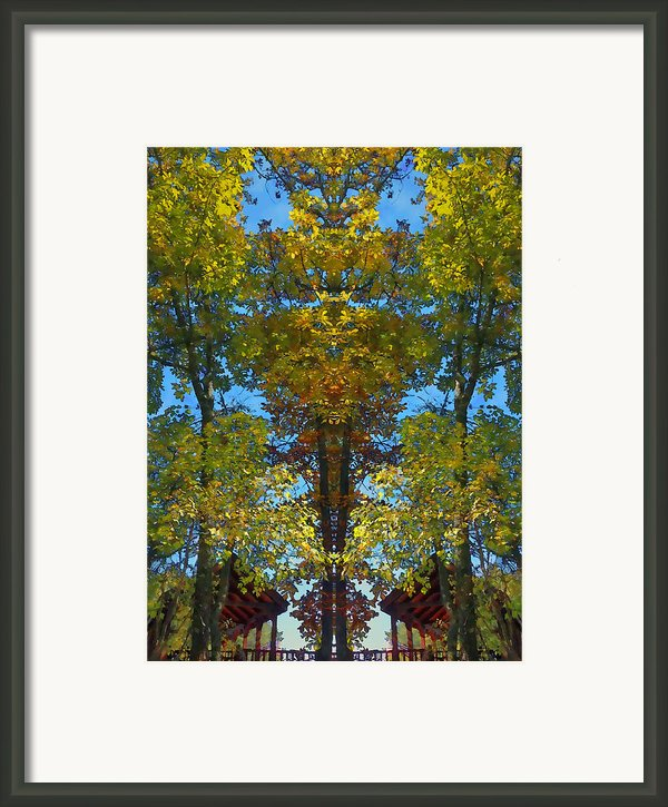 Trees Alive Framed Print By Susan Leggett