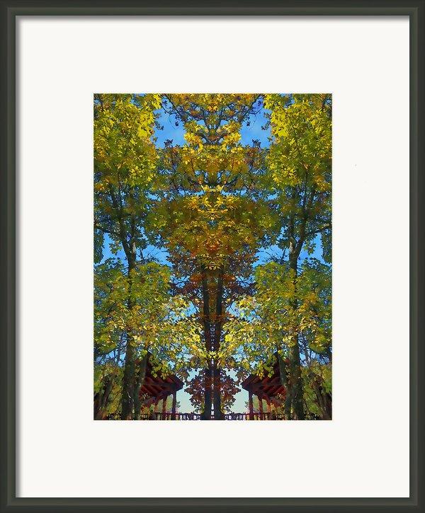 Trees Alive Framed Print By Susan Leggett