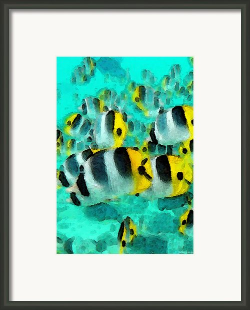 Tropical Fish - Schools Out Framed Print By Sharon Cummings