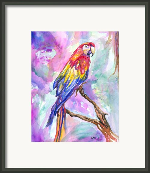 Tropical Treasure Framed Print By Eve  Wheeler