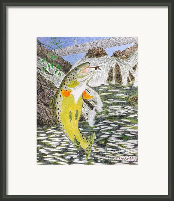 Trout Stream In May Framed Print By Gerald Strine