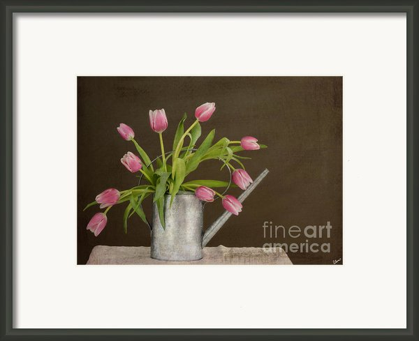 Tulip Bouquet  Framed Print By Alana Ranney