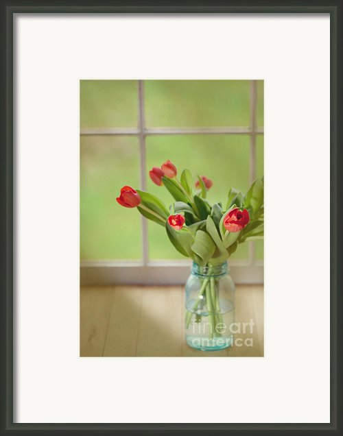 Tulips In Mason Jar Framed Print By Kay Pickens