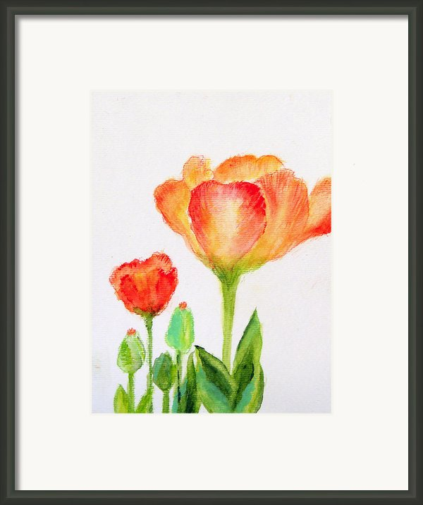 Tulips Orange And Red Framed Print By Ashleigh Dyan Bayer