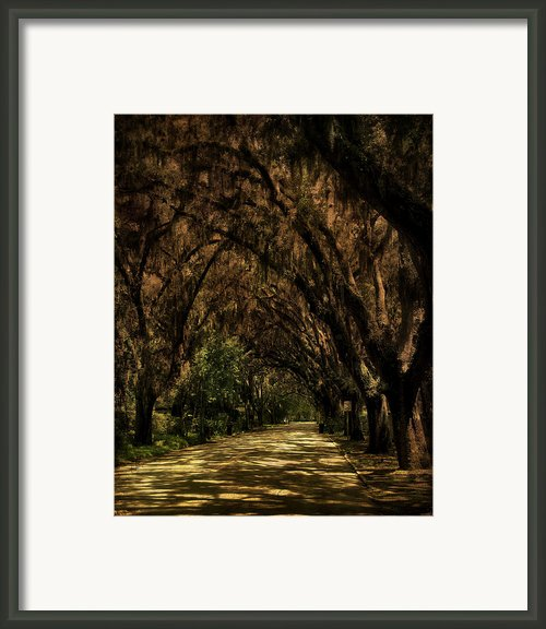 Tunnel   Framed Print By Mario Celzner