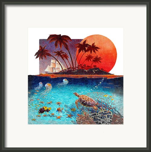 Turtle And Jelly Soup Framed Print By David  Chapple