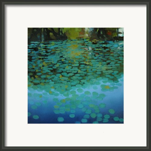 Turtle Creek 3 Framed Print By Cap Pannell