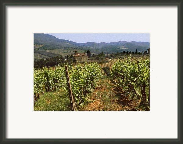 Tuscany Vineyard No.2 Framed Print By Mel Felix