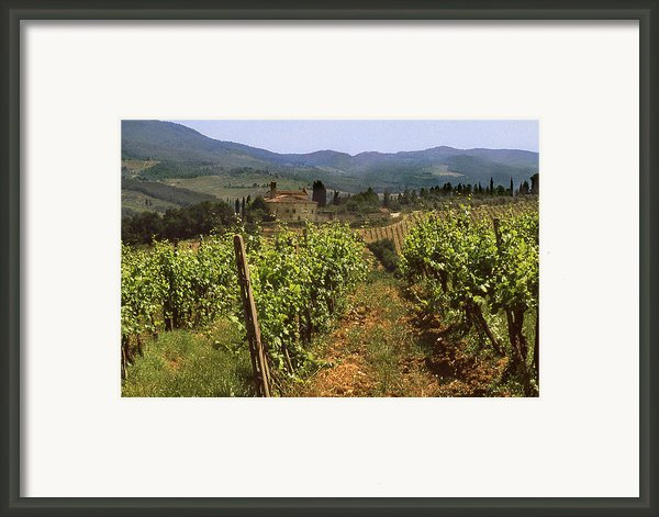 Tuscany Vineyard No.2 Framed Print By Mel Felix