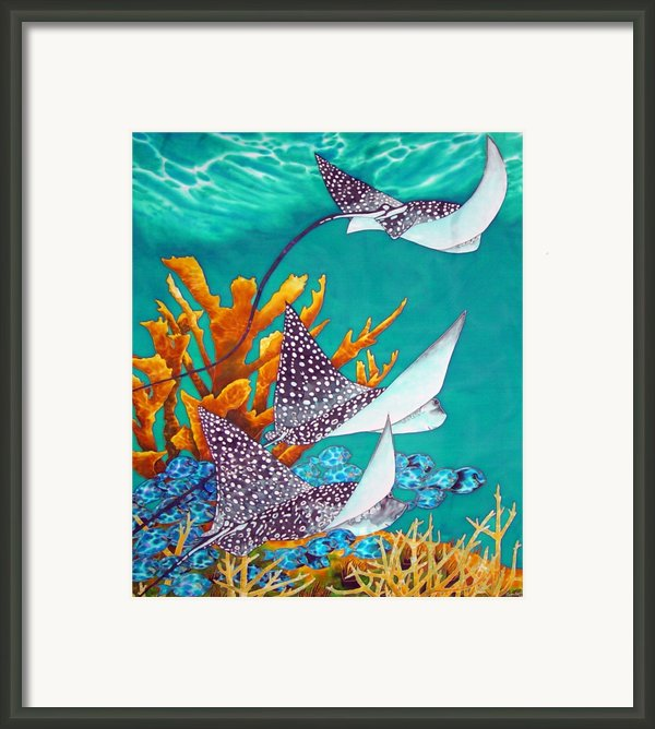 Under The Bahamian Sea Framed Print By Daniel Jean-baptiste
