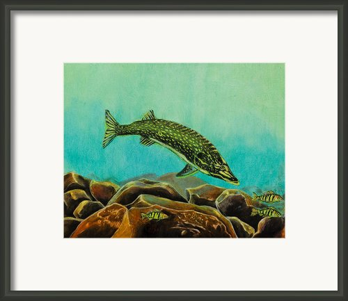 Underwater Predators Panel 2  Framed Print By Jeanne Fischer