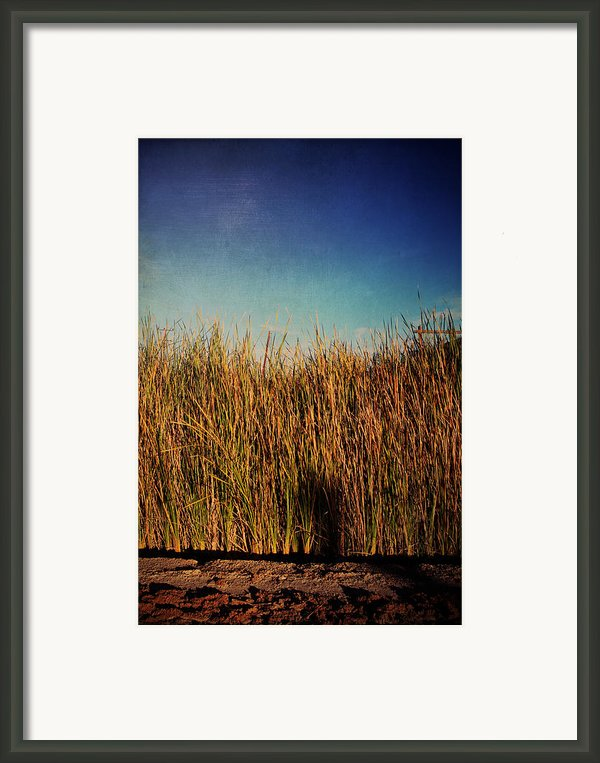 Unexpected Things Framed Print By Laurie Search