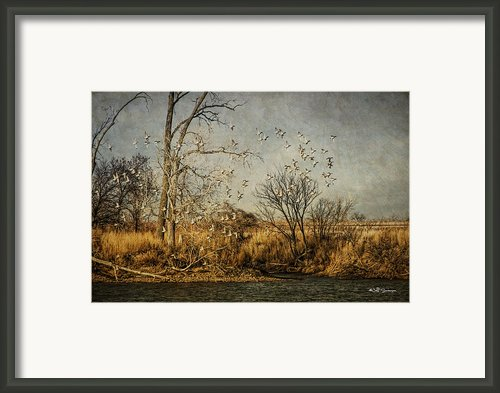 Up Up And Away Framed Print By Jeff Swanson