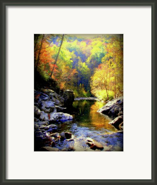 Upstream Framed Print By Karen Wiles