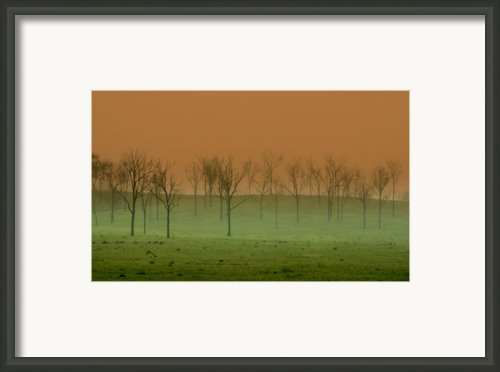 Veil Of Mystery Framed Print By Holly Kempe