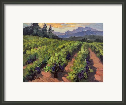 Vineyard At Dentelles Framed Print By Diane Mcclary