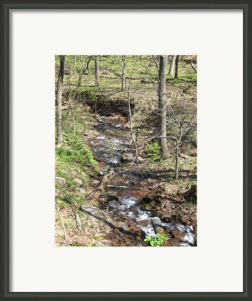 Vineyards In Va - 121213 Framed Print By Dc Photographer