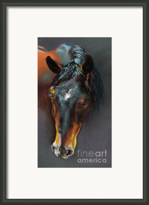 Vinnie Mustang Love Framed Print By Frances Marino