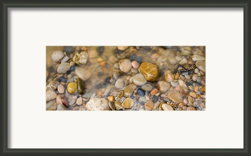 Virgin River Pebbles Framed Print By Adam Pender