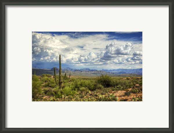 Visions Of Arizona  Framed Print By Saija  Lehtonen