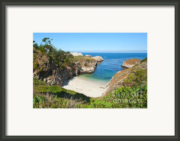 Vista Of China Cove At Point Lobos State Reserve California Framed Print By Artist And Photographer Laura Wrede
