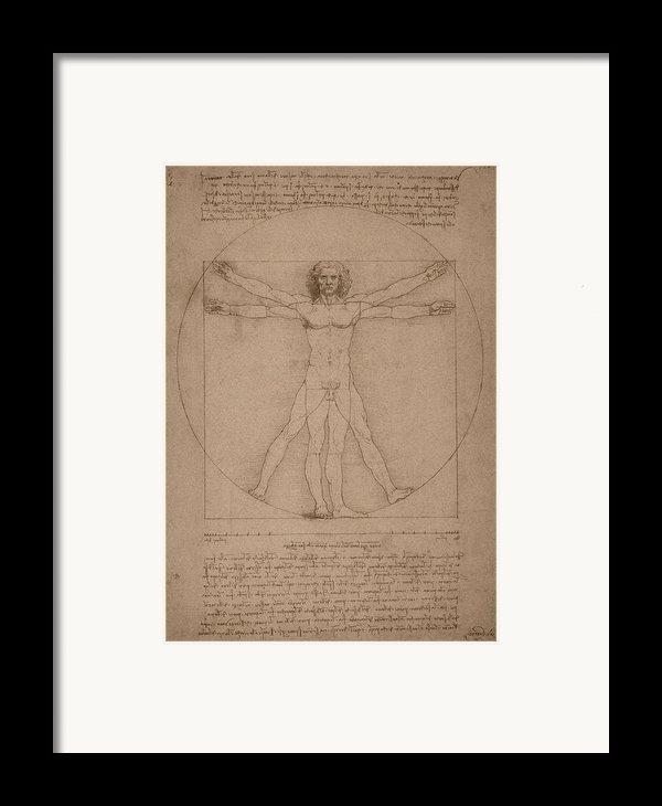 Vitruvian Man  Framed Print By War Is Hell Store