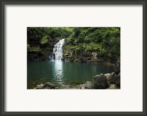 Waimea Falls Framed Print By Charmian Vistaunet