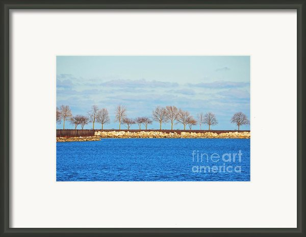 Waiting For Summer - Trees At The Edge Framed Print By Mary Machare