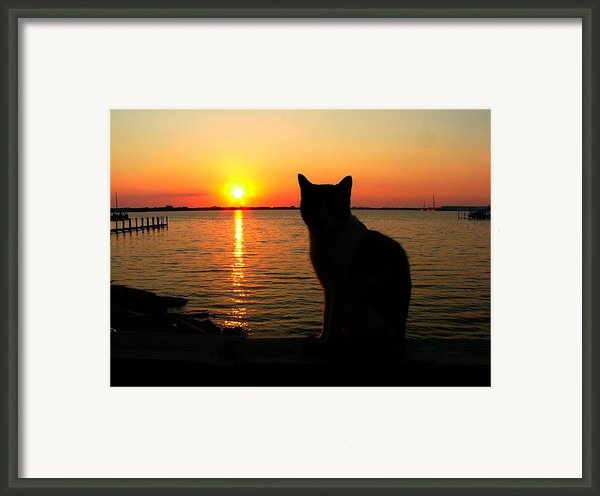 Waiting For The Shrimpers To Come In With Their Catch Framed Print By Julie Dant