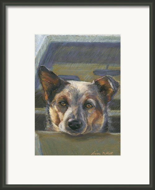 Waiting Framed Print By Laura  Talbot