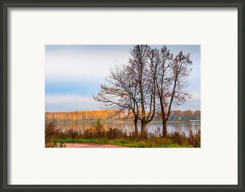 Walk Along The River Bank Framed Print By Jenny Rainbow