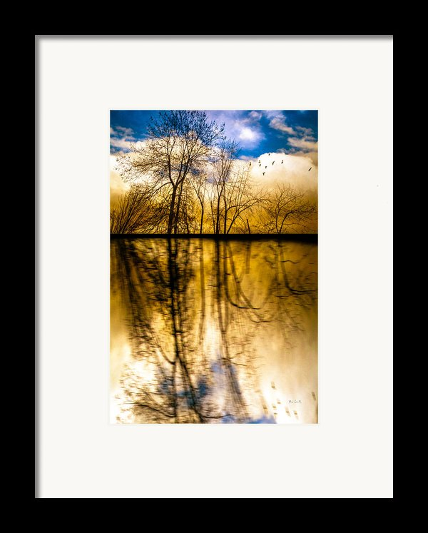 Walk Along The River Framed Print By Bob Orsillo