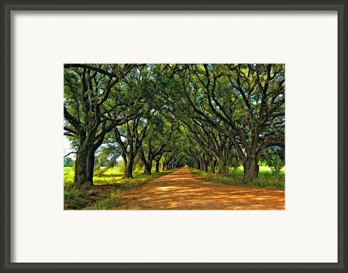 Walk With Me Paint Version Framed Print By Steve Harrington