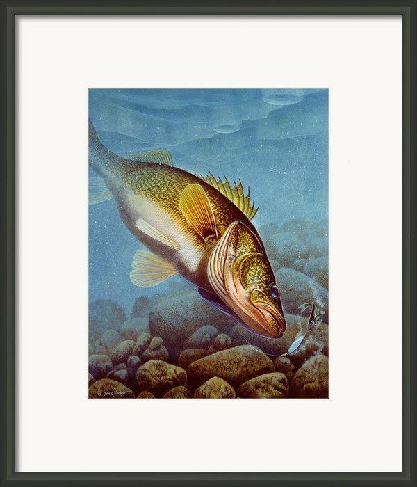 Walleye Ice Fishing Framed Print By Jon Q Wright