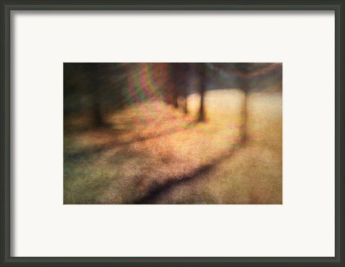 Warner Park Sunrise Framed Print By David Morel