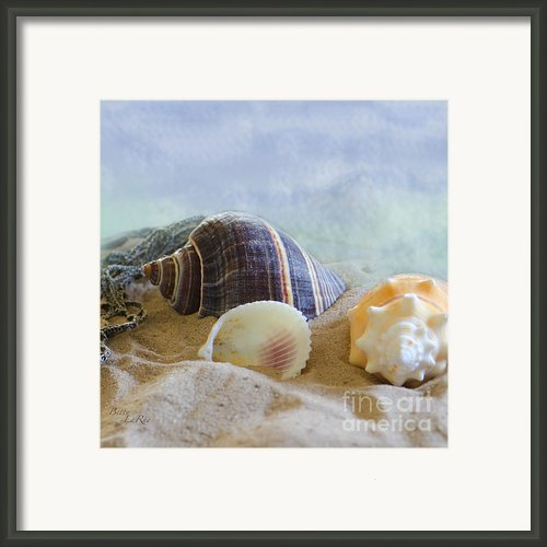 Washed Ashore Framed Print By Betty Larue