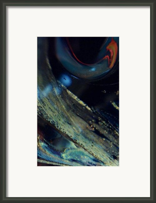 Watchful Framed Print By Gaby Tench