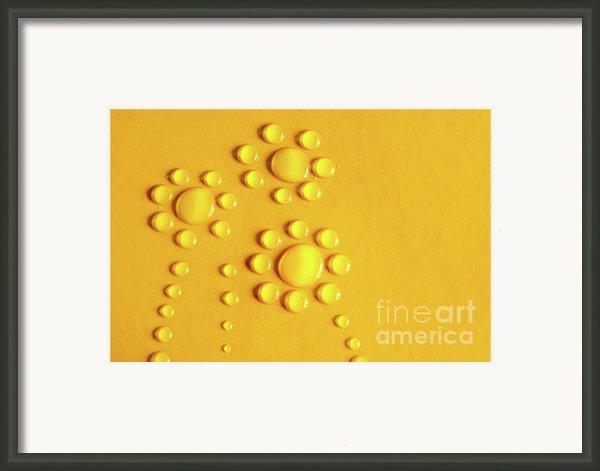 Water Flowers Framed Print By Carlos Caetano