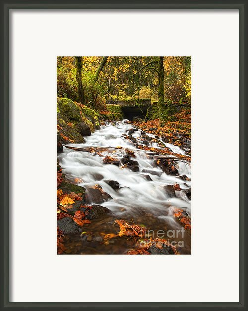 Water Under The Bridge Framed Print By Mike  Dawson