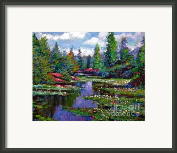 Waterlily Lake Reflections Framed Print By David Lloyd Glover