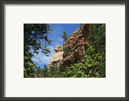 West Fork Trail Framed Print By Ellen Henneke