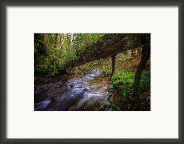 West Humbug Creek Framed Print By Everet Regal