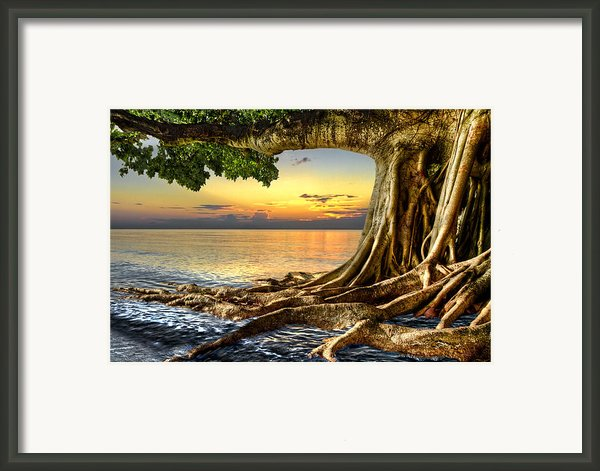 Wet Dreams Framed Print By Debra And Dave Vanderlaan