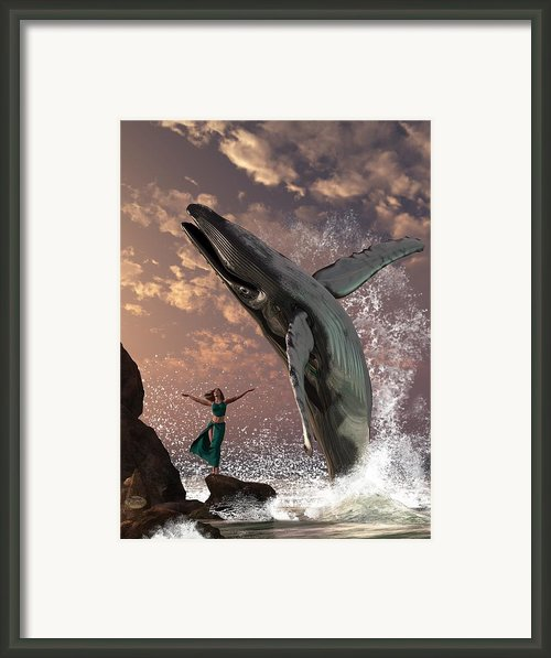 Whale Watcher Framed Print By Daniel Eskridge