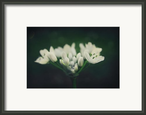When Love Was Young And New Framed Print By Laurie Search