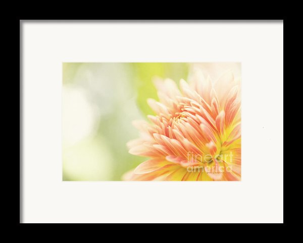 When Summer Dreams Framed Print By Reflective Moment Photography And Digital Art Images