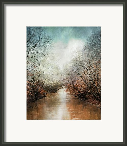 Whisper Of Winter Framed Print By Jai Johnson