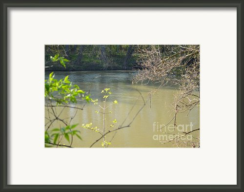 White River Framed Print By Alys Caviness-gober